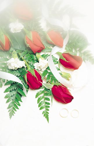 Red Roses & Rings Wedding Program Pkg 100