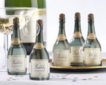 Bubbly Champagne Bubbles (Set of 24