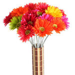 27 Gerbera Daisy Stem - Colors!